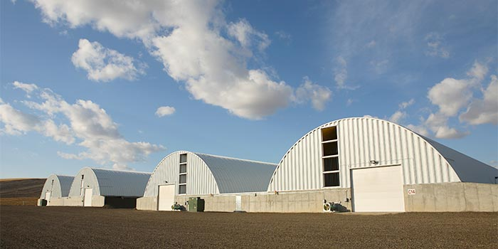 IVI Curvet Potato and Onion Storage Buildings