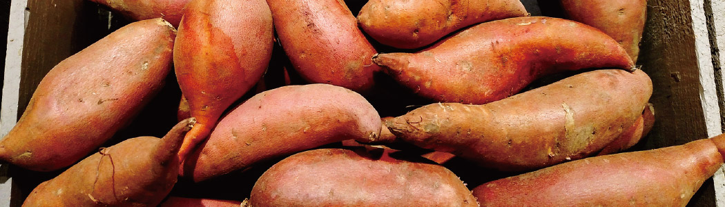 Sweet Potatoes in wooden storage box