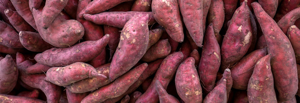 Close up of red/purple skinned sweet potatoes