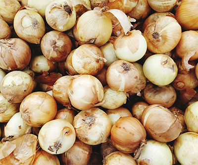 Onions piled together in storage
